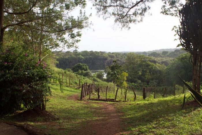 20150508_Peace Corps_Cameroon_Bamenda_5479