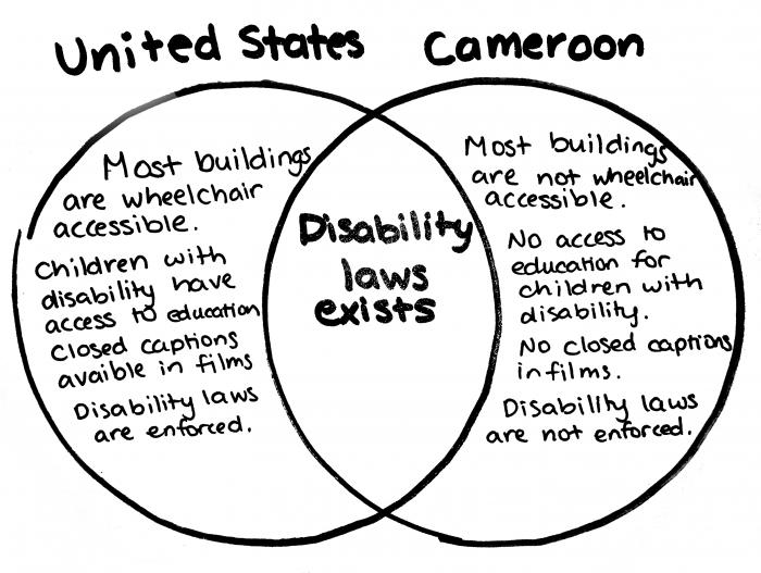disabilitylaws-USvsCameroon