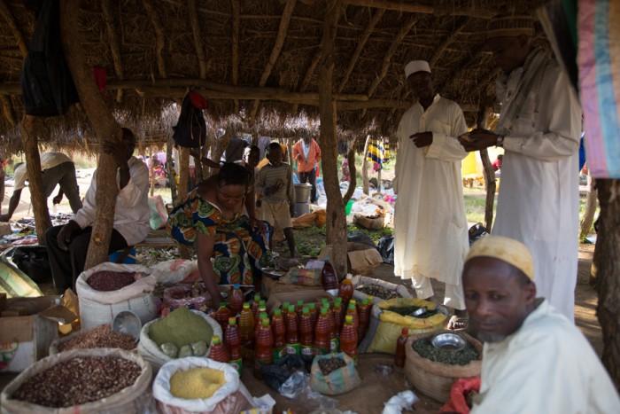 20151114_Peace Corps_Cameroon_Mbakaou_7875