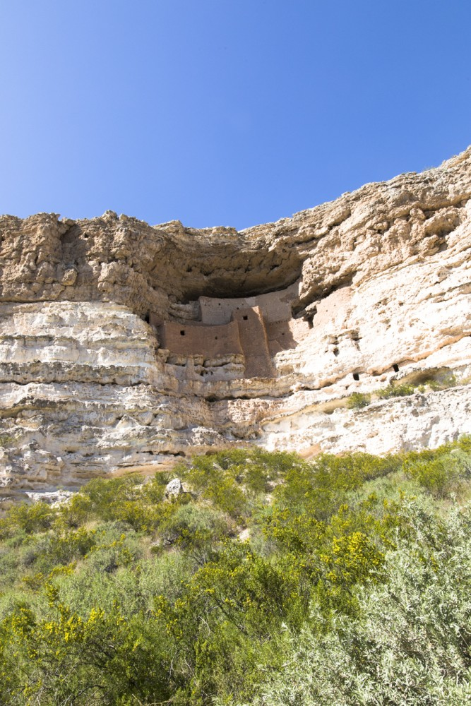 Alex and I visited Montezuma Castle located near Sedona. It's a Puebloan cliff dwelling habited by Sinagua people between 1100 AD and 1425 AD.