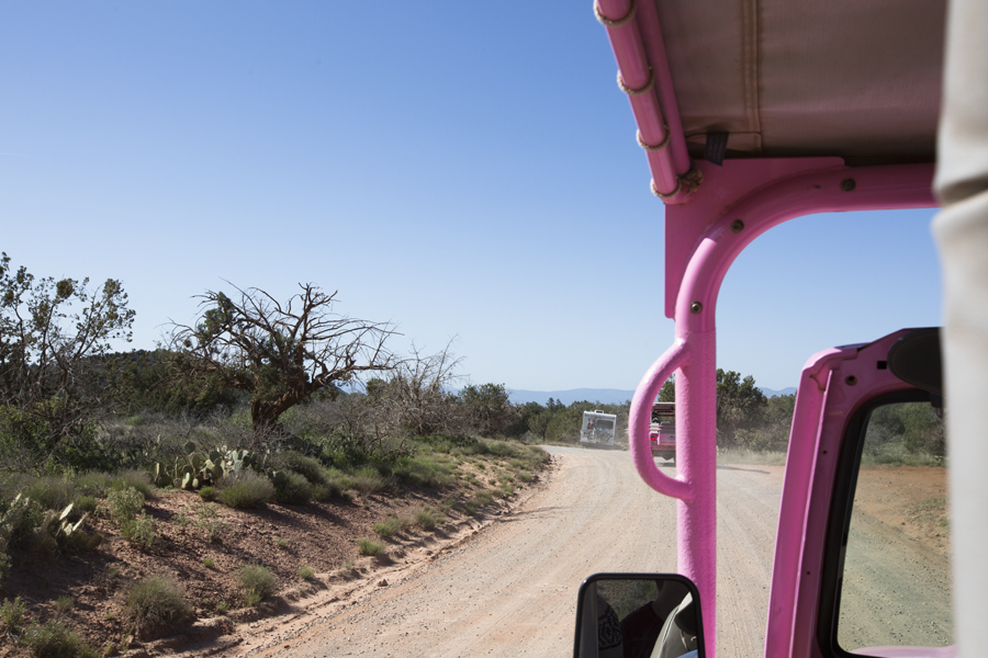Alex and I took a tour in a PINK jeep through Sedona. It was quite a wild and adventurous ride.