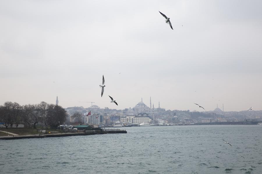Turkey_Istanbul_20170315_9149