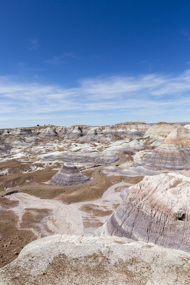 Alex and I visited Petrified Forest National Park where saw the beautiful Painted Desert.